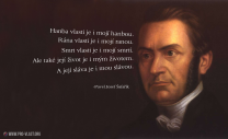 Pavel Josef Šafařík - Vlast